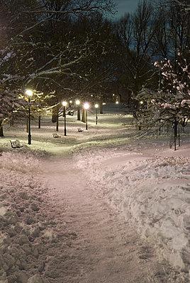 Prospect Park bei Nacht - p5690239 von Jeff Spielman