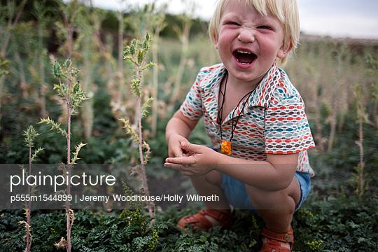 p555m1544899 von Jeremy Woodhouse/Holly Wilmeth