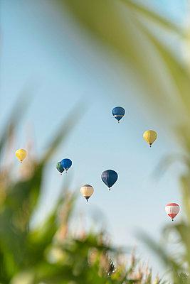 Hot-air balloons - p335m854890 by Andreas Körner