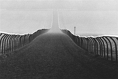 Die Pferderennbahn Rowley Mile in Newmarket - p9790522 von Klingler
