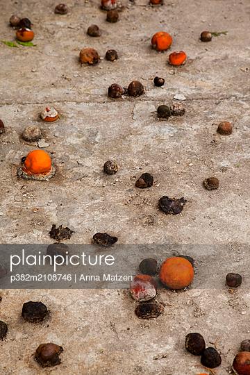 Rotting mandarins - p382m2108746 by Anna Matzen