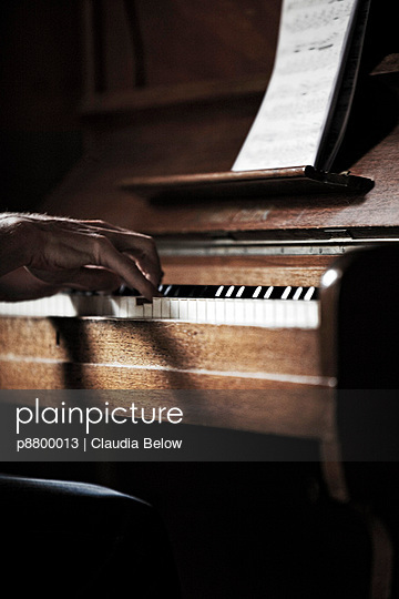 Pianist - p8800013 by Claudia Below