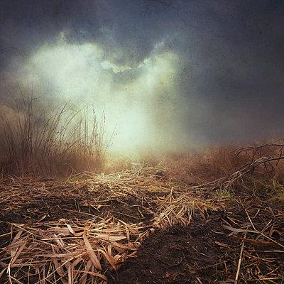 Ghostland - p1633m2220245 by Bernd Webler
