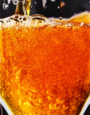 Glass of beer, close-up - p1397m2184304 by David Prince