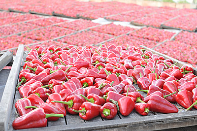 Dried fruits - p885m1087441 by Oliver Brenneisen