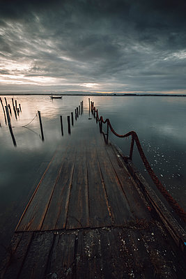 old wooden port submerged in the Ria de Aveiro - p1166m2152240 by Cavan Images