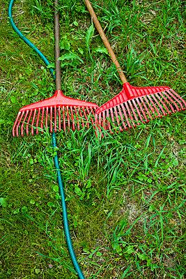 Two RedRakesAndWater HoseOn AGreen Lawn,Gardening (Två röda krattor och vattenslang på grön gräsmatta, trägårdsarbete) - p847m673310 by Johanna Norin