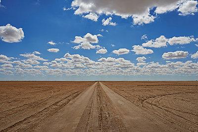 Endlos lange Strasse in der Wüste - p390m1011473 von Frank Herfort