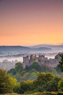UK, England, Shropshire, Ludlow, St Laurence's Church at Sunrise - p651m2032843 by Alan Copson