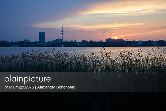 Alster lake in Hamburg - p1696m2292975 by Alexander Schönberg