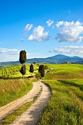 Monte Amiata - p1205m1106458 by Toni Anzenberger & Christina Anzenberger-Fink