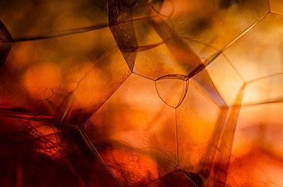 Soap bubble - p1544m2122140 by Mirka van Renswoude