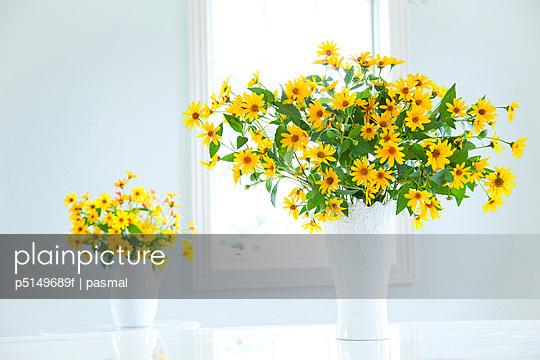Cucumber leaf Sunflowers (Helianthus cucumerifolius) in vases
