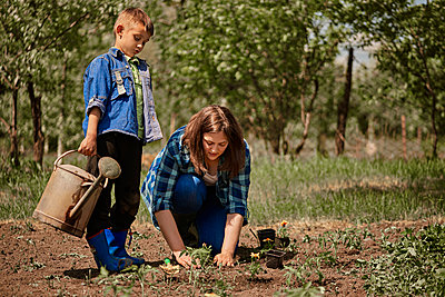 Son holding watering can while mother planting seedling in back yard - p300m2282760 by Zeljko Dangubic