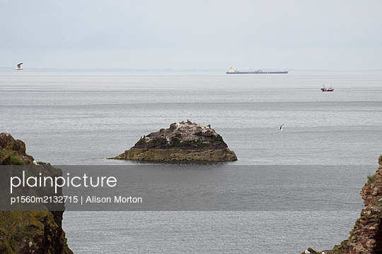 Dunbar Harbour - p1560m2132715 by Alison Morton