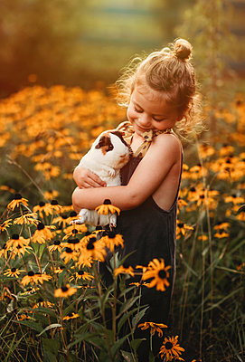 little girl snuggling her pet guinea pig in a field of flowers - p1166m2130345 by Cavan Images