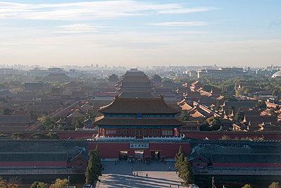 p429m983361f von Fang Zhou