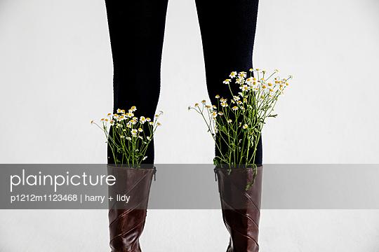 Kamille in den Stiefeln - Detail - p1212m1123468 von harry + lidy