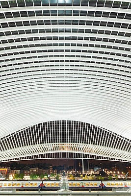 Roof construction in railway station Liège-Guillemins - p587m1155055 by Spitta + Hellwig