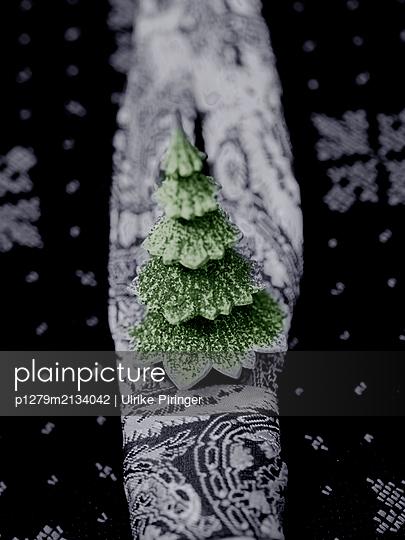 Kleiner Weihnachtsbaum - p1279m2134042 von Ulrike Piringer