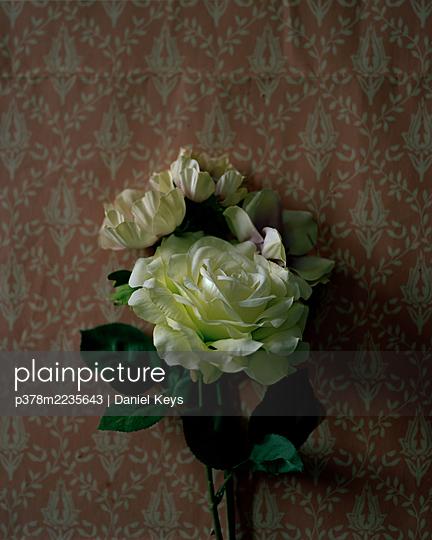 Flowers on floral wallpaper - p378m2235643 by Daniel Keys