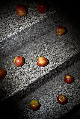 Äpfel auf der Kellertreppe - p1149m1133286 von Yvonne Röder