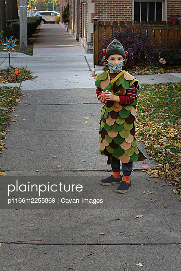 A boy dressed up as a fish for Halloween - p1166m2255869 by Cavan Images
