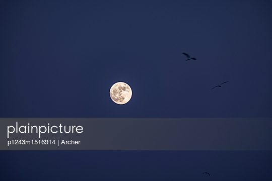 Full moon - p1243m1516914 by Archer