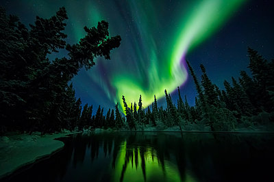 The aurora reflects in the Clearwater River in Delta Junction, Interior Alaska, USA - p442m1225067 by Steven Miley
