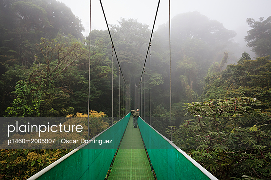 Man looking for wildlife at one of the hanging bridges of the Sky Walk at the Monteverde Cloud Forest Reserve. Costa Rica.       - p1460m2005907 by Oscar Dominguez