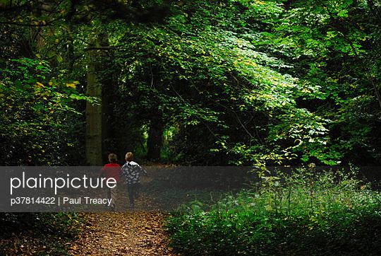 Boys run through woods - p37814422 by Paul Treacy