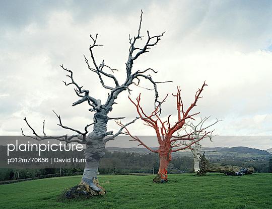 Wales - p912m770656 by David Hurn