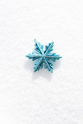 snow crystal - p454m2209954 by Lubitz + Dorner