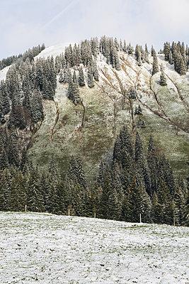 Eisheiligen - p1477m1548342 von rainandsalt