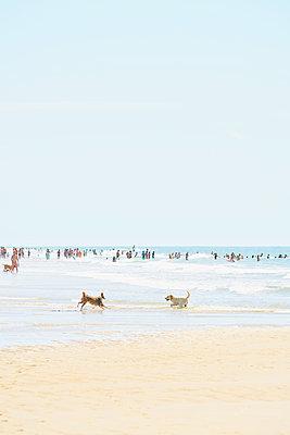 Menschen am Meer - p1312m1511186 von Axel Killian