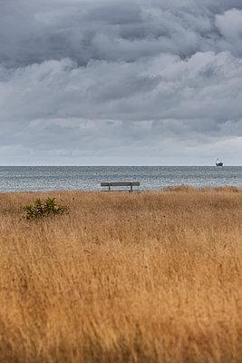 Herbst an der Ostsee - p248m1067836 von BY