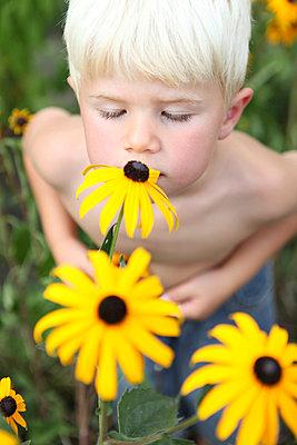 Little boy within flowers - p045m939862 by Jasmin Sander