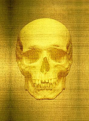 Golden skull - p803m2286022 by Thomas Balzer