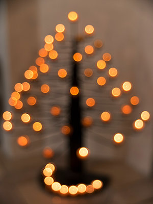 Illuminated tree in monastery - p240m1424588 by Valerie Wagner