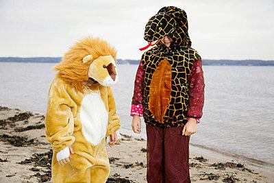 Löwe und Schlange - p2950164 von Nanine Renninger