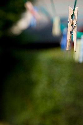 Clothes peg - p6690672 by David Harrigan