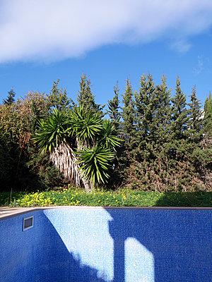 Empty pool - p1021m1537880 by MORA