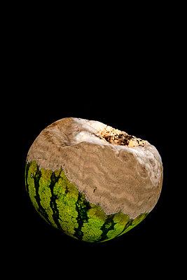 Rotten watermelon - p451m2286170 by Anja Weber-Decker