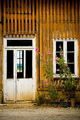 In the country - p248m710435 by BY