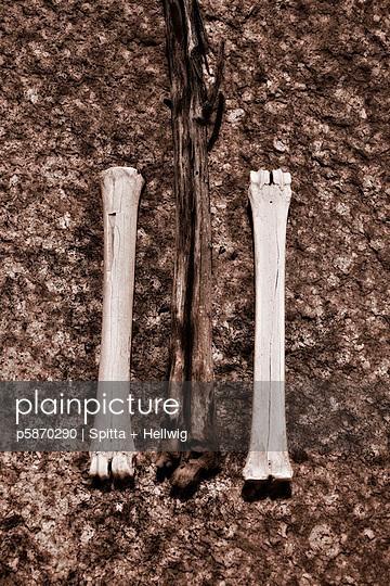 Verbleichte Knochen - p5870290 von Spitta + Hellwig