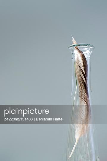 p1228m2191408 von Benjamin Harte