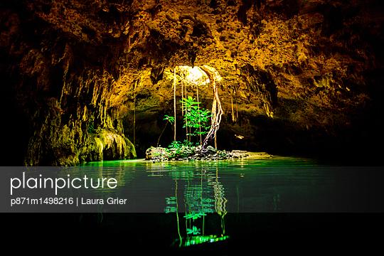 p871m1498216 von Laura Grier