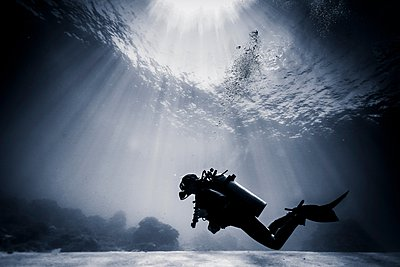 Silhouetted scuba diver swimming near coral reef, Lombok, Indonesia - p429m1062816 by Steve Woods Photography