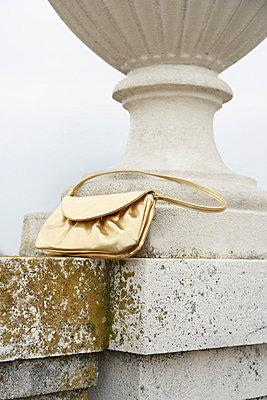 Die goldene Tasche - p4641052 von Elektrons 08