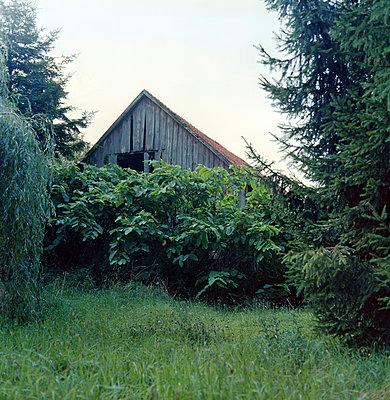 Barn - p989m939849 by Gine Seitz